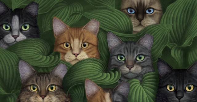 Cats in Hosta